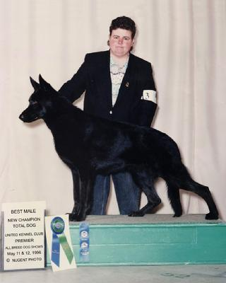 Best Male GSD and TOTAL DOG Winner at 1996 UKC Premier Dog Show