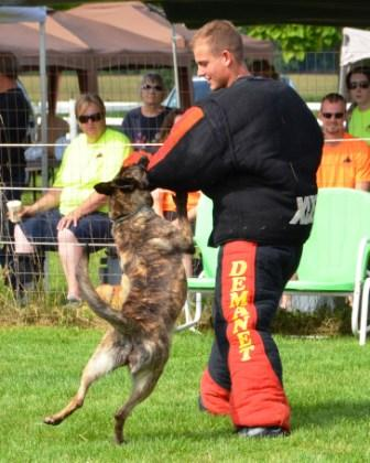 Nada competing at the 2011 Dog Sports Open