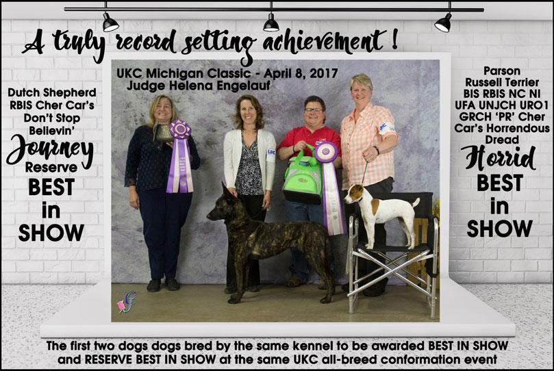 BIS & RBIS won by 2 dogs bred by same kennel