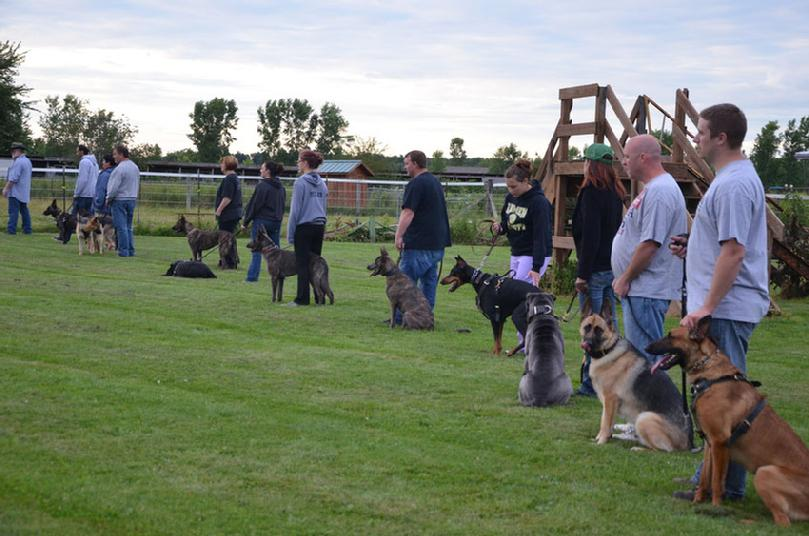 Canine Personal Protection group class at Cher Car Kennels